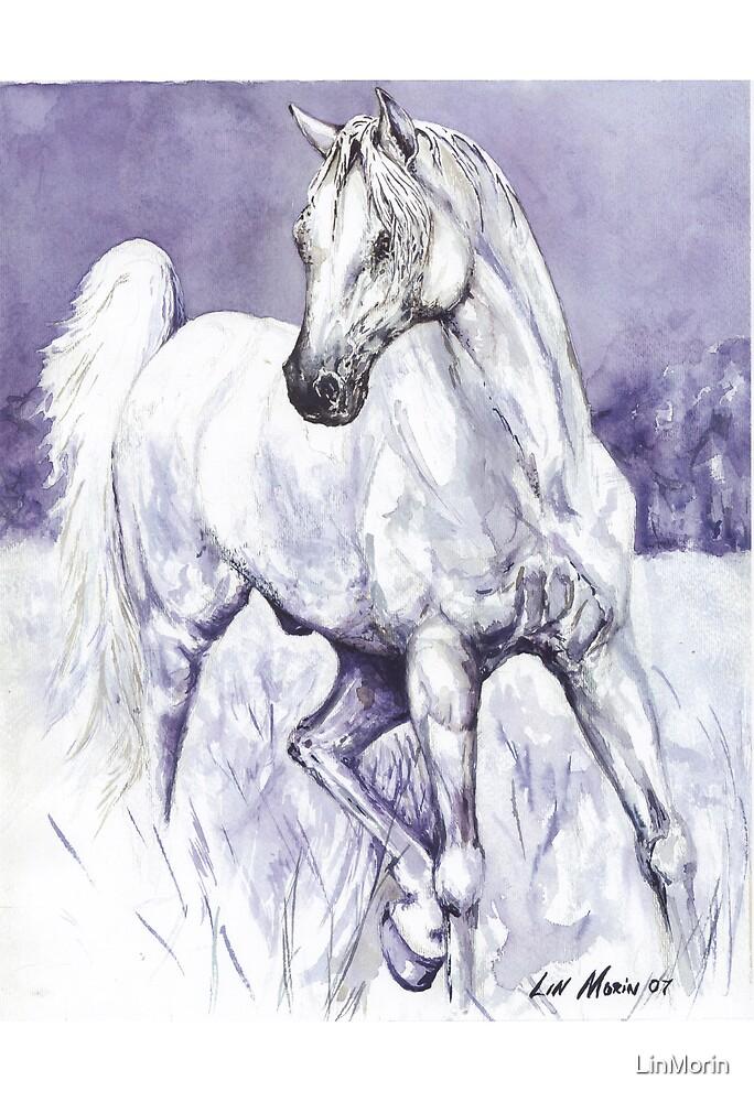 """""""Wonder Stallion"""" by LinMorin"""