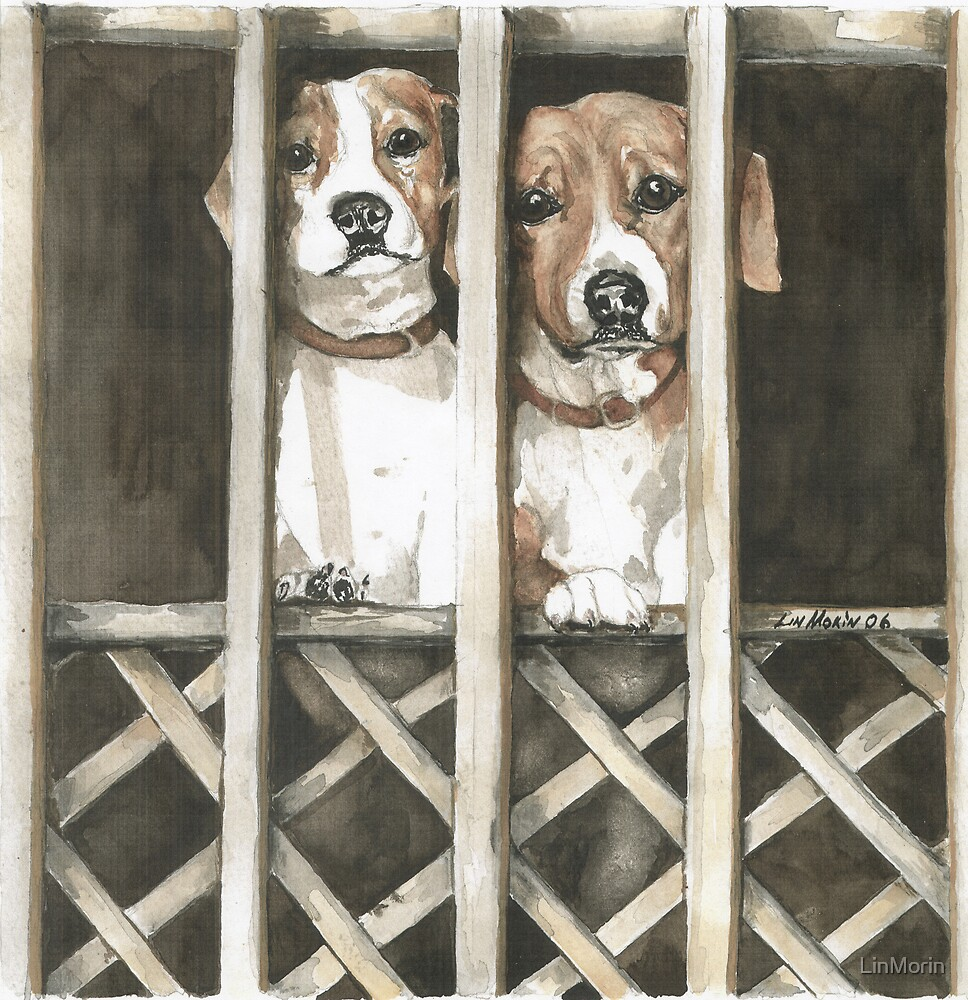 """Let us Out"" by LinMorin"