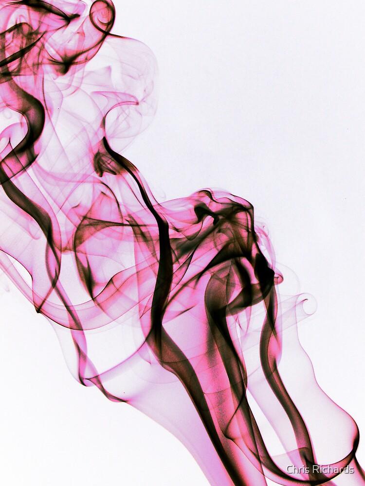 Silk Flower by Chris Richards