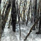 Winter Shadows by Wayne King