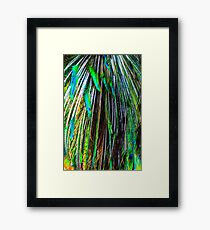 Peacock feathers in abstract Framed Print