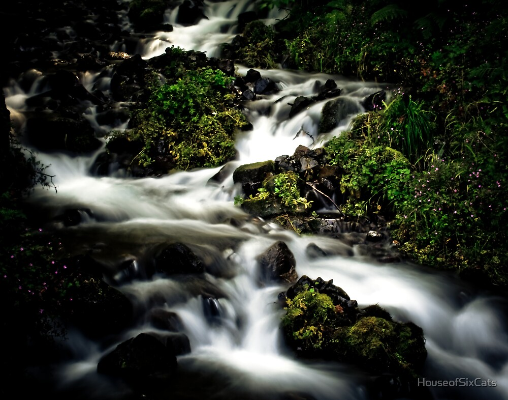 Rushing Water by HouseofSixCats