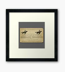 Eadweard Muybridge – 1830-1904 – Animal Locomotion Theory – Horse Poster - Grey Framed Print