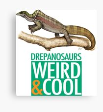 Drepanosaurs are Weird and Cool Canvas Print