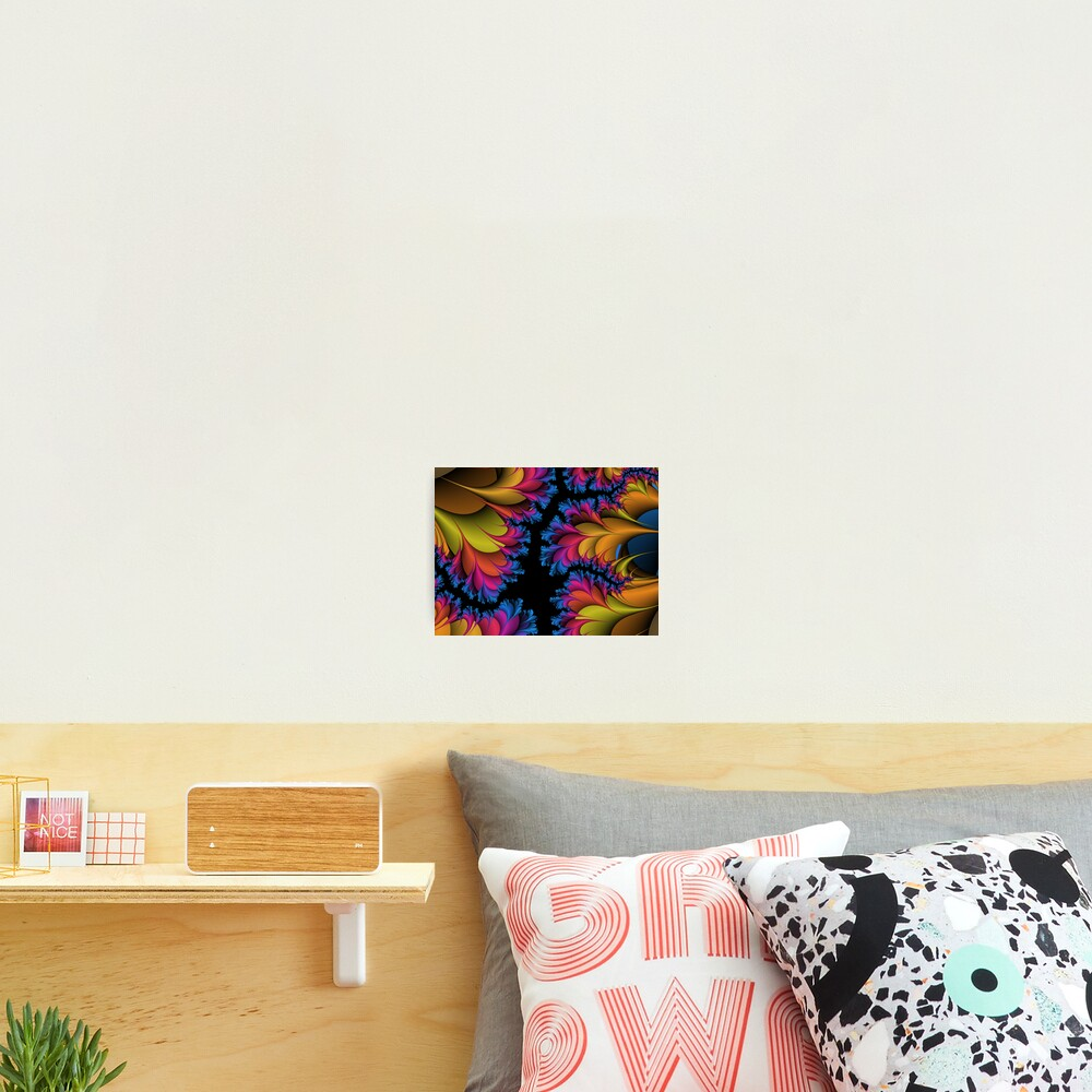 Frilly Clam Photographic Print