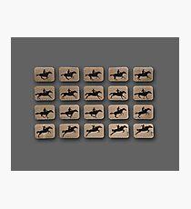 Eadweard Muybridge – 1830-1904 – Locomotion Theory – Horse and Jump – Grey Photographic Print