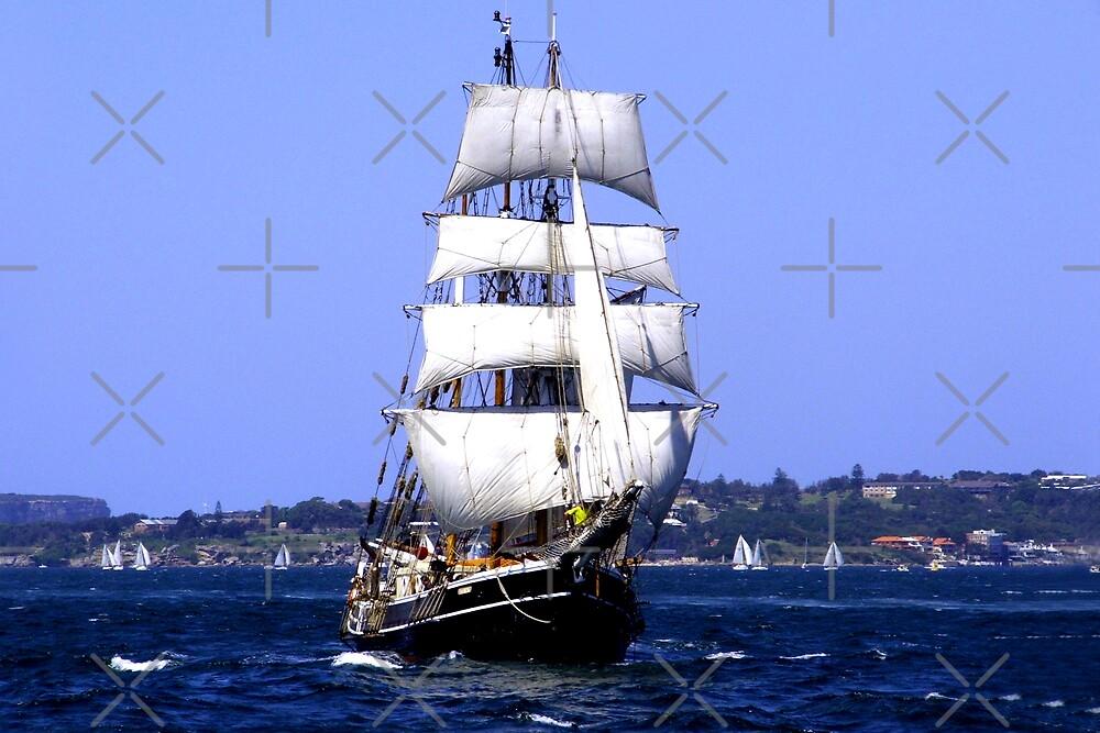 To Sail by Varinia   - Globalphotos