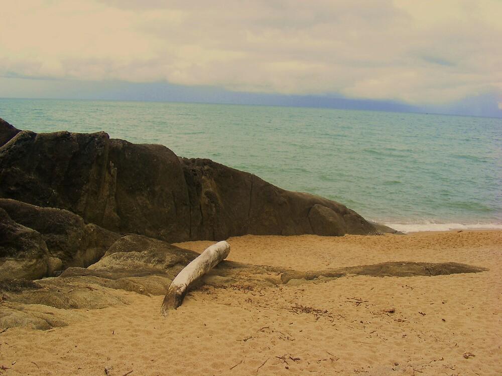 beach by xXDarkAngelXx