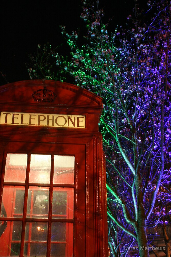 Telephone Box and Branches by Sarah Matthews