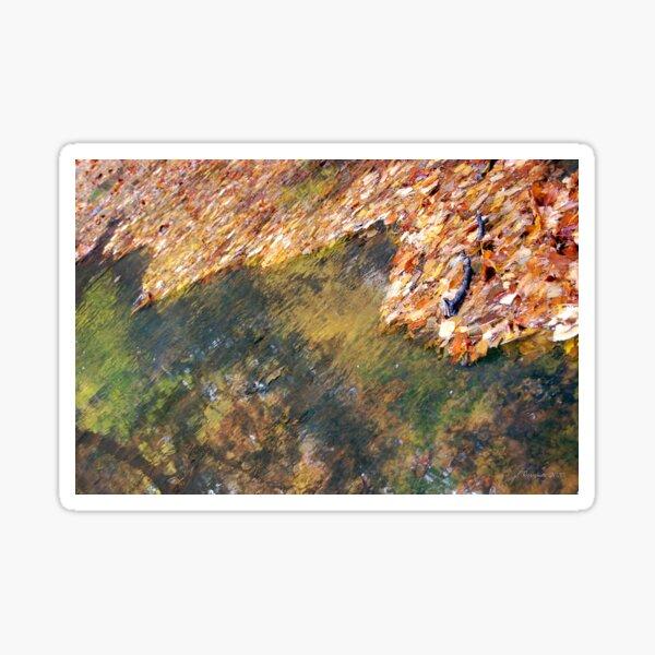 Monet's Mirror Sticker