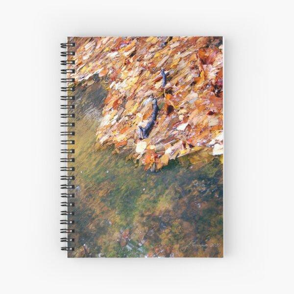 Monet's Mirror Spiral Notebook