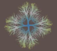 exponential bifurcation | gradient