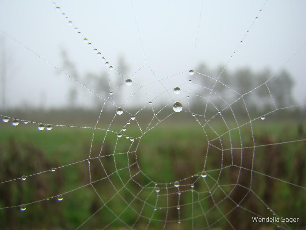 Spiderweb by Wendella Reeves