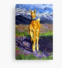 Candy Colt Horse Rocky Mountains Flowers Wildflower Hills Field Western Wildlife Palomino Animal Clouds Snow Snowcapped Beautiful Peaceful Canvas Print