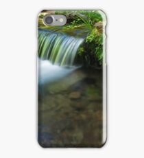 The Poetry of Nature iPhone Case/Skin