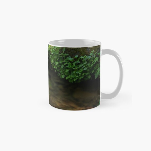 The Poetry of Nature Classic Mug