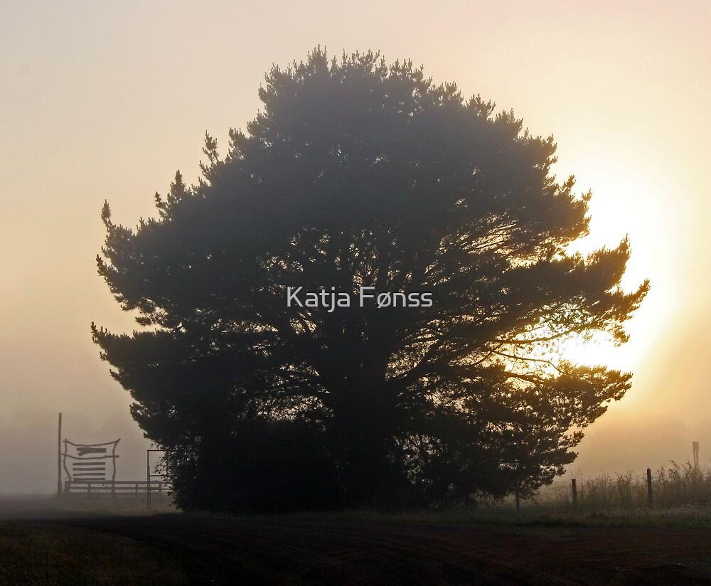 Morning Fog by Katja Fønss