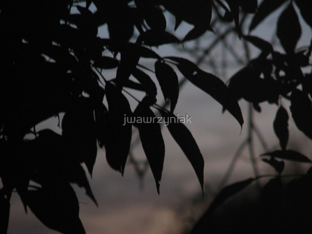 Dusk Leaves by jwawrzyniak