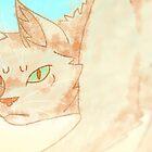 «Gatos guerreros: Sandy» de Kara Hatton