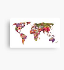 It's Your World Canvas Print