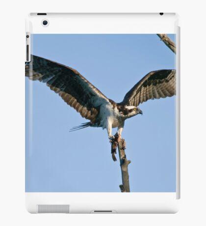 Osprey - Ottawa, Ontario iPad Case/Skin