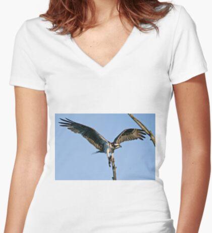 Osprey - Ottawa, Ontario Women's Fitted V-Neck T-Shirt