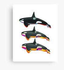Orca Trinity Canvas Print