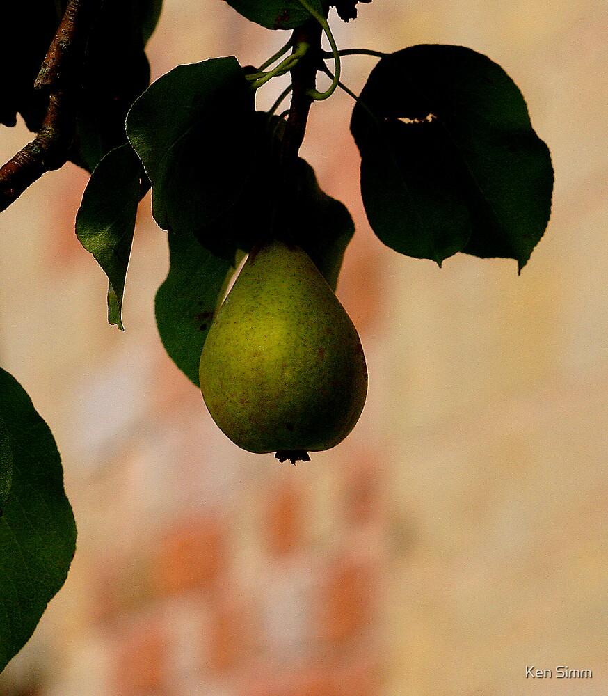 A Nice Pear by Kenart
