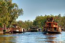 A Fleet of Paddlesteamers on the Murray River by Christine Smith