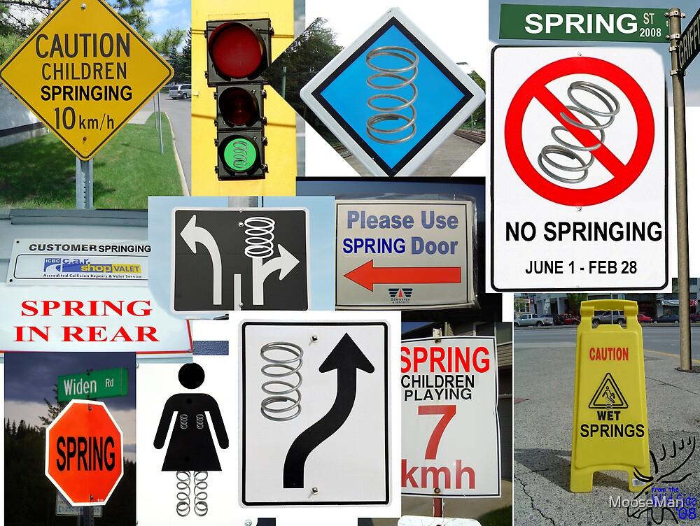 Signs of spring by MooseMan