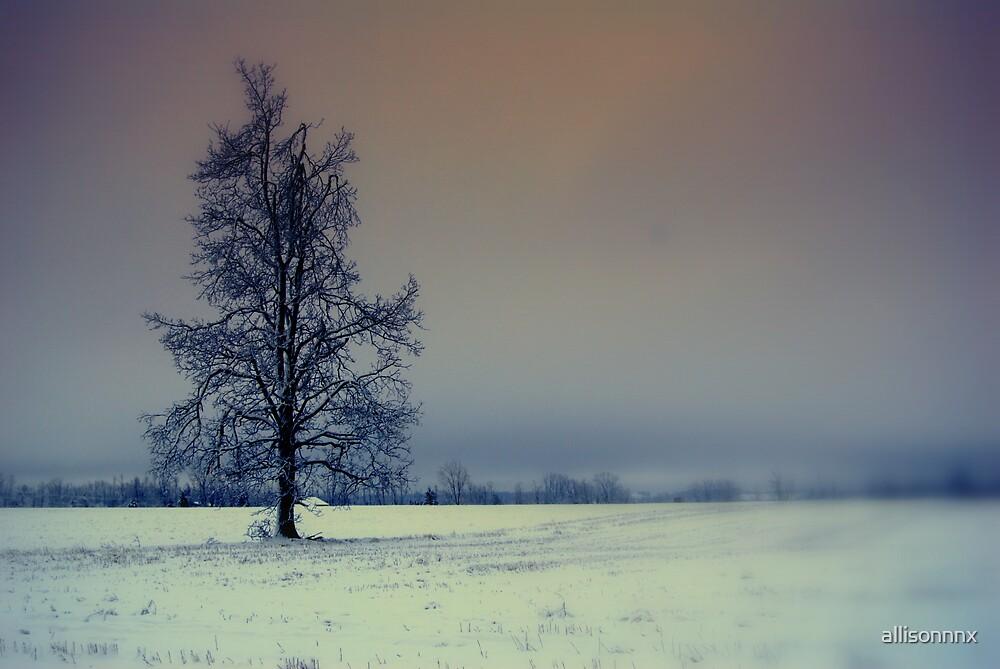 Lonesome by allisonnnx