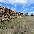 Stone Fence, Sedan Hill,South Australia 2011 by muz2142