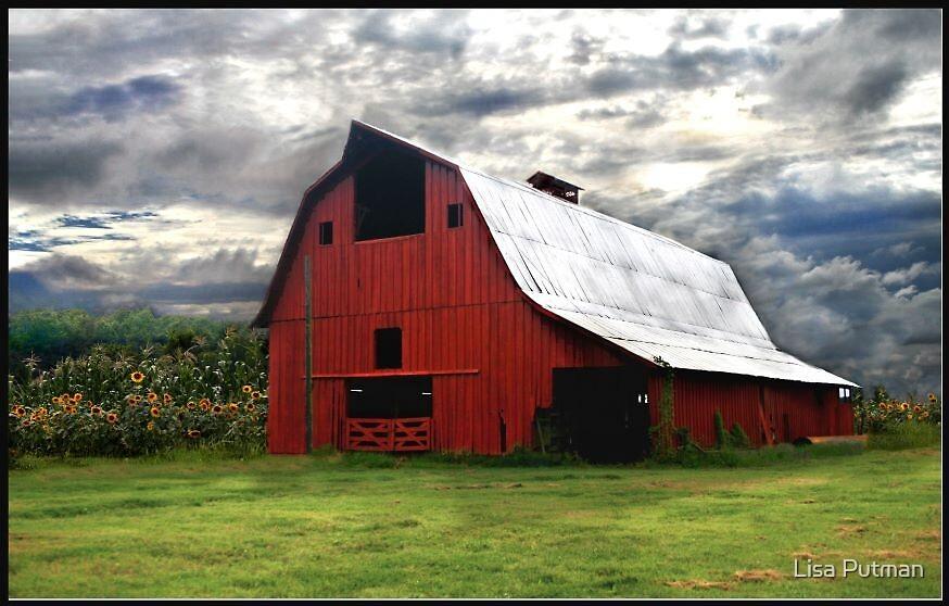 Sunny Farms by Lisa G. Putman