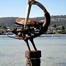 Sea Bird Sculpture, Merimbula,NSW,Australia 2011 by muz2142