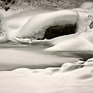 Snowy River by Barbara  Brown