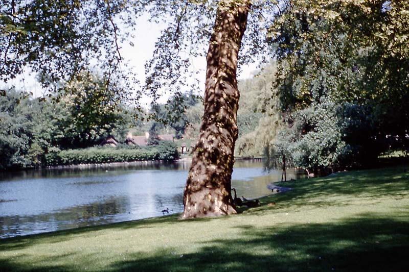 St James Park by MayWebb