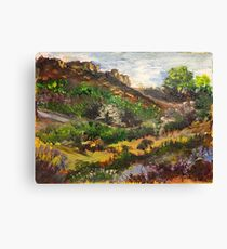 Magaliesberg cliffs Canvas Print