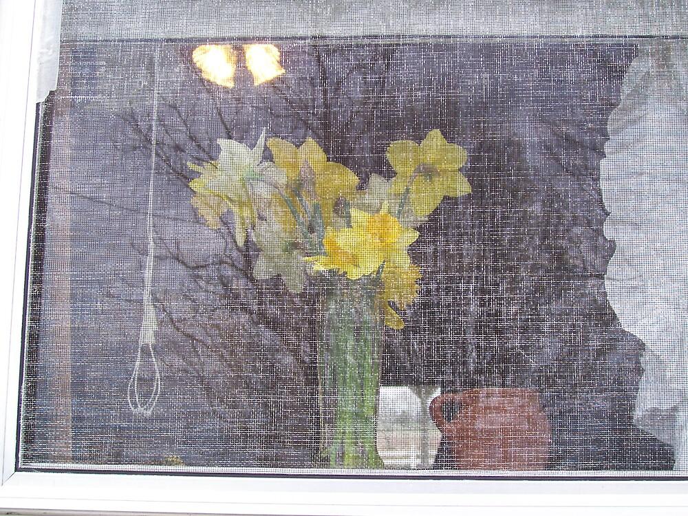 Grannie's Window by Rebecca Ogden