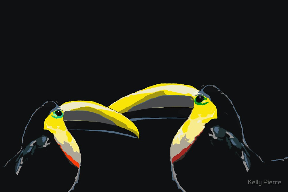Toucans are Better Than One by Kelly Pierce