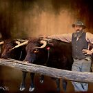 The Bullock Driver by wallarooimages