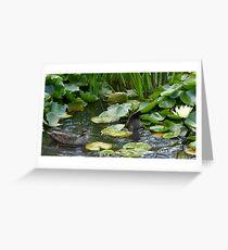 Duck, Dunk & Flower Greeting Card