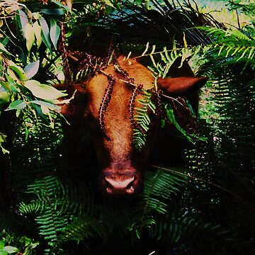 Bull emerging from primeval forest by bsmf