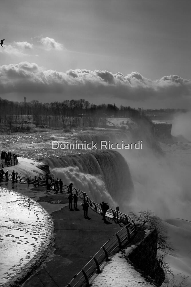 Niagara Falls by Dominick Ricciardi