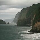 North Kohala Coast Line by Randy Richards