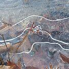 Icy Nebula by Douglas Hill