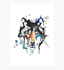 Watercolour Wolf Photographic Print
