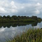 Manning River Taree 6369 by kevin chippindall