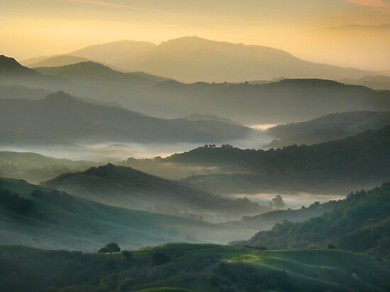 East Bay Hills by Gary Pope