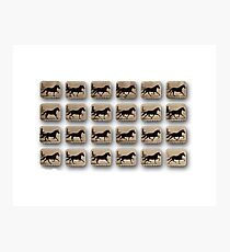 After – Eadweard Muybridge – 1830-1904 – Locomotion Theory – Horse and Cart – White Photographic Print