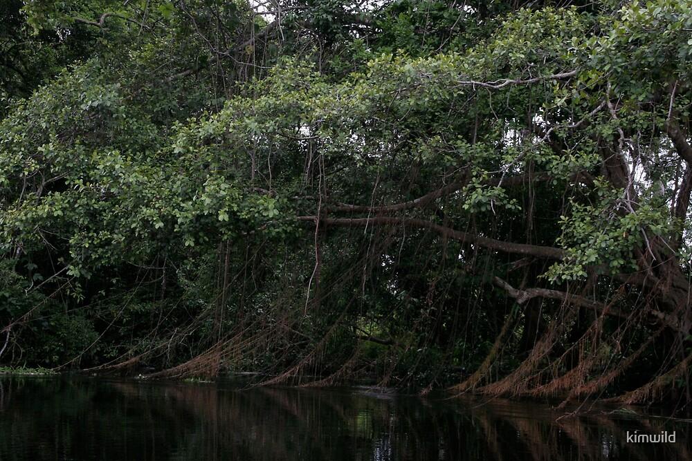 River Tree by kimwild